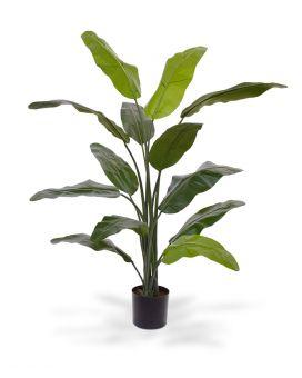 Maxifleur Kunstpflanzen – täuschend echtes Aussehen und einfach zu reinigen